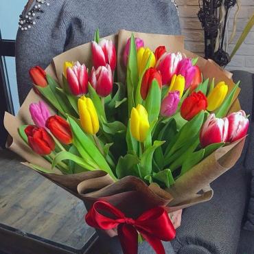 23 сортовых тюльпана микс