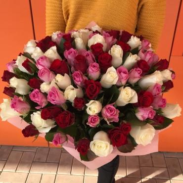 101 роза Мини Кения в упаковке
