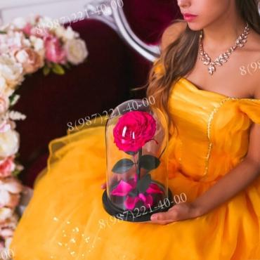 Розовая роза King в колбе