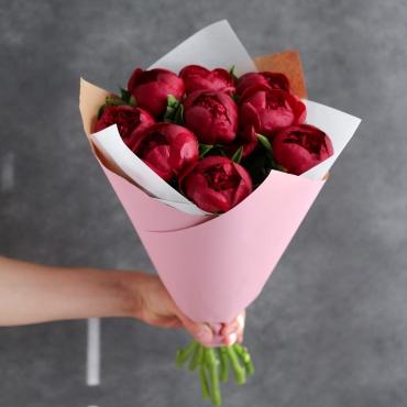 9 сочных пионов бордового цвета