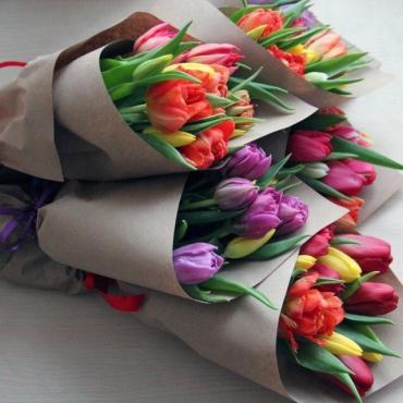 11 тюльпанов микс в оформлении