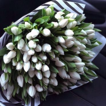 Букет из 101 белого тюльпана в оформлении